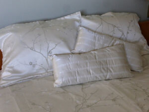 Queen Duvet Cover with 2 matching shams, 2 pillows