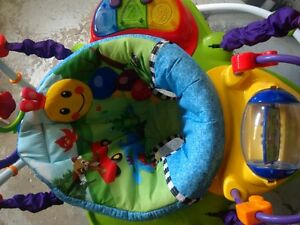Baby Einstein Excersaucer Cambridge Kitchener Area image 1