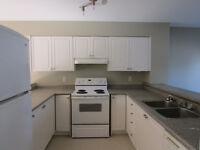 STUDENT HOUSING!!! Rent by the room: Semi House Available!