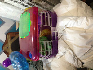 3 hamster cages $25 each