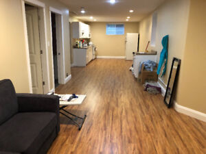 One bedroom basement suite one block to the Vedder river!