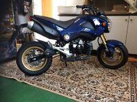 Honda MSX125 grom, monkey bike