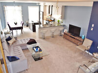 Georgetown Fully Furnished Executive Rental