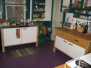 Room for Rent Nov, Dec, or Jan (tenant flexible on move out date Peterborough Peterborough Area image 1