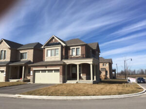 Pristine Clean Whole House at Mississauga Rd & Financial Drive