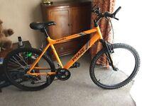 New Apollo Phase Mountain Bike + extras!