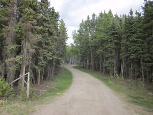Mobile Home on 9.88 acres in Wildwood, AB-SELLER MOTIVATED!