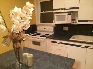 3 bedroom apartment in kitcheners heritage district