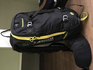 Mammoth avalanche backpack 15L in Vernon