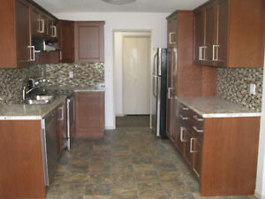 FREE mo, COMPLETE RENO, BE 1ST, UTLTS INCL,Central, Adult, 6plex
