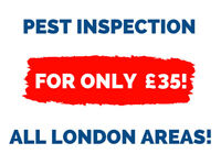 🐜 Pest Control Services 🕷️ Book An Inspection for ONLY £35! 🐜
