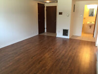 Great Downtown 1 Bedroom. New laminate and paint! $495 HW Inc.