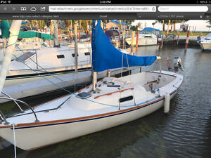 Viking 22 for sale