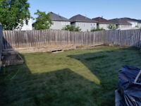 Sod Removal&Install as low as $0.99 Sq foot