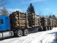 Great News from S.S. Firewood Brokers