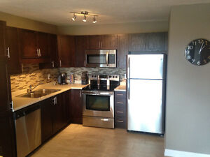 Modern Condo located 3 minutes to downtown Moncton!