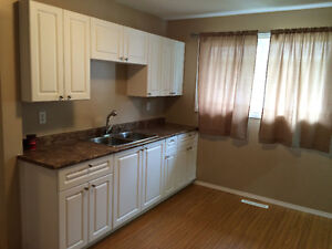 Recently Renovated Duplex For Rent