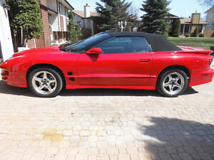 2000 Trans Am WS6 Convertible