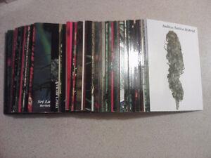 Carte de collection Mari/Canna antique à vendre!!! Saint-Hyacinthe Québec image 2