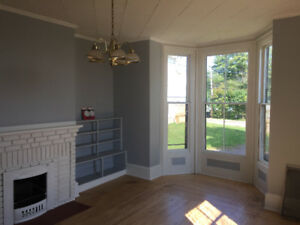 Large downtown 1-bedroom apartment