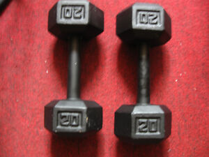 2 x 20 lbs Dumbbells Dumbell Haltere Althere