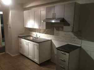 5 1/2 beautifully renovated in quiet building