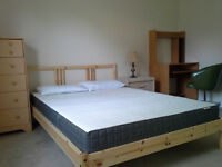 Large Furnished Room in a Specious Flat; Female; Inclusive; NOW