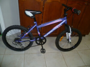 """20"""" Supercycle Impulse 5 Spd Bike with Front Suspension"""