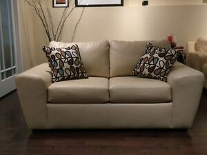 Leather Loveseat and 2 throw cushions