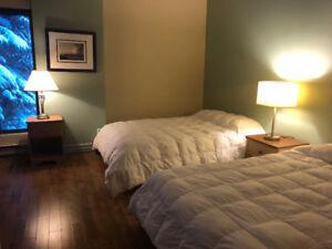 Mont Ste-Anne Libre à partir du 1re juin  condo 2 chambres