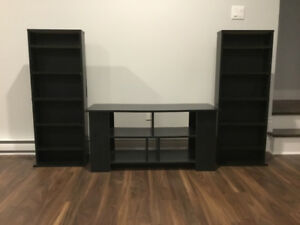 TV stand and DVD shelves