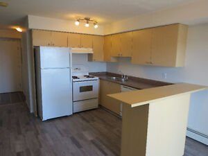 Newly Renovated 1 Bedroom & Den in Axxess - Ready for Possesion