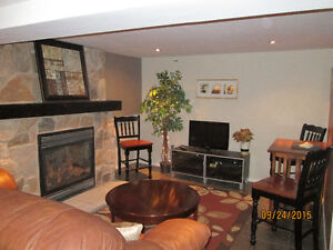 A Home out of the Ordinary! Kitchener / Waterloo Kitchener Area image 10