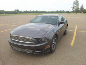 2014 Ford Mustang V6 Premium Coupe (2 door) Automatic
