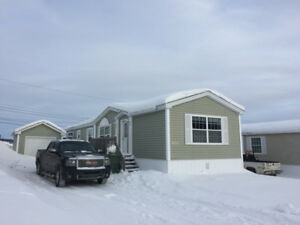Beautiful 2 bedroom 1 bathroom  with extra large kitchen & shed