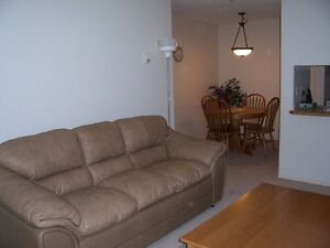 JUNE 1, 2bd/2bath, Condo (above ground) Fully Furnished