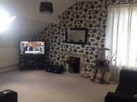 Double Room to Rent in lovely Large Two Bedroom Apartment in Waterloo