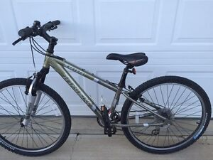 Trek 3900 mountain bike