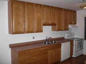 tall oak cabinets/ and more AS IS- vanity, stove/dishwasher