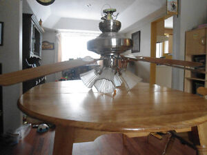 5 Blade Ceiling Fan with 4 Lights