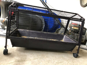 Guinea pig cage - perfect for babies