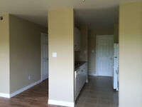 NEWLY RENOVATED 2 Bedroom apartment in Moncton