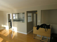 Beautiful apartment in West end 3 bedroom July, August or Sept 1