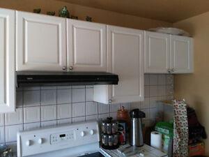 armoires de cuisine en thermoplastic