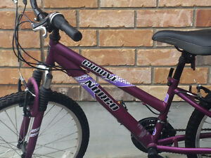 """Norco Groove 24"""" girls bike. Excellent condition. London Ontario image 2"""