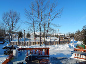 Complete Outdoor Rink for Sale