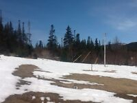 Vacant Land near Gros Morne in Wiltondale, $20,000