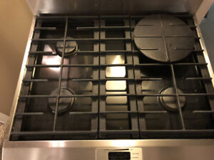 Kitchen Aid chef quality gas stove and fridge (stainless steel)