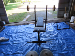 Bench press, curling bench, chin up bar, weights