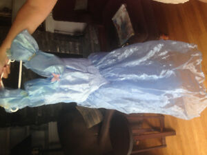 Cinderella dress costume new